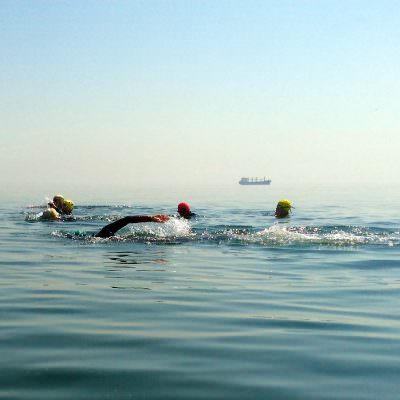 Swim Programs